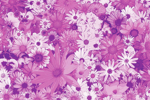 Wall Art - Painting - Pink Flowers by JQ Licensing