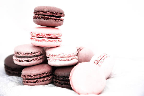 Wall Art - Photograph - Pink French Macarons by Georgia Fowler