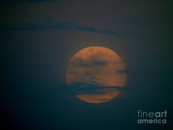 Photograph - Pink Full Moon April 2016 by D Hackett