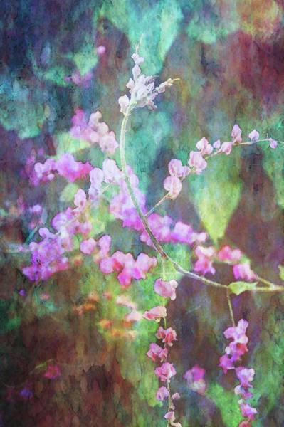 Photograph - Pink Gems In The Rain 4810 Idp_2 by Steven Ward