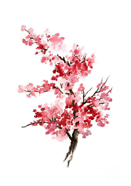 Cherry Tree Painting - Cherry Blossom, Pink Gifts For Her, Sakura Giclee Fine Art Print, Flower Watercolor Painting by Joanna Szmerdt