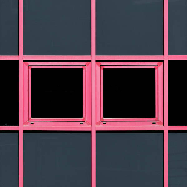 Photograph - Pink Grid by Stuart Allen