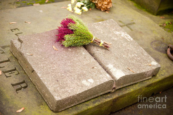 Wall Art - Photograph - Pink Heather With Spruce Posy by Arletta Cwalina