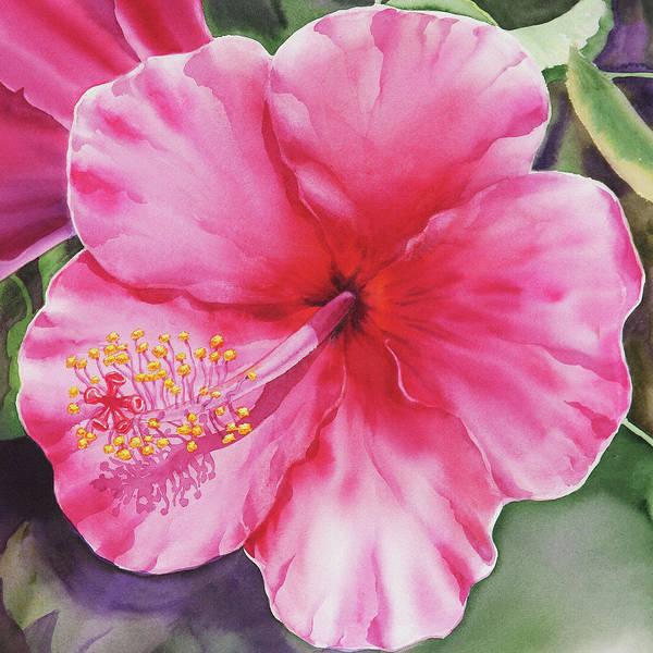 Hibiscus Flower Painting - Pink Hibiscus  by Irina Sztukowski