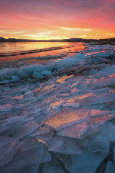 Photograph - Pink Ice by Ryan Moyer