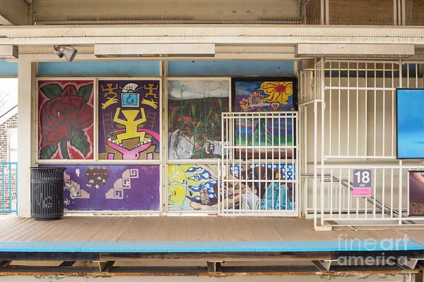 Wall Art - Photograph - Pink Line by Juli Scalzi