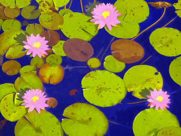 Painting - Pink Lotus Blossoms by Dominic Piperata