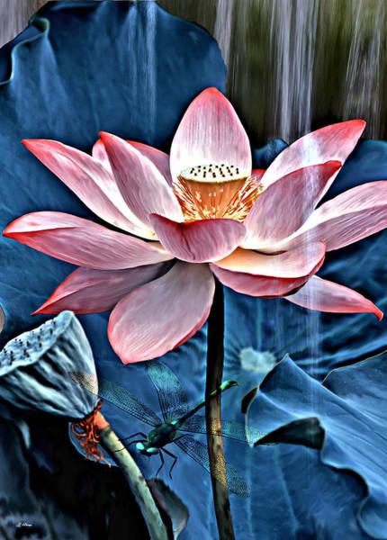 Lotus Mixed Media - Pink Lotus by G Berry