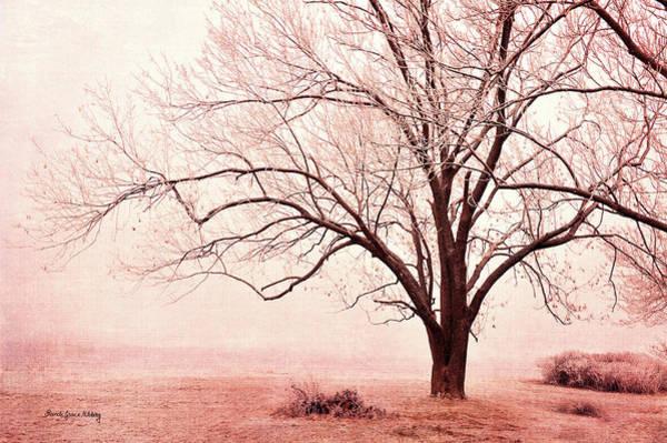 Photograph - Pink Mist by Randi Grace Nilsberg