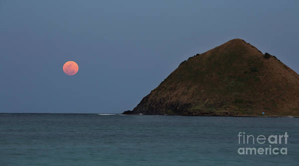Photograph - Pink Moon And Moku Iki by Charmian Vistaunet
