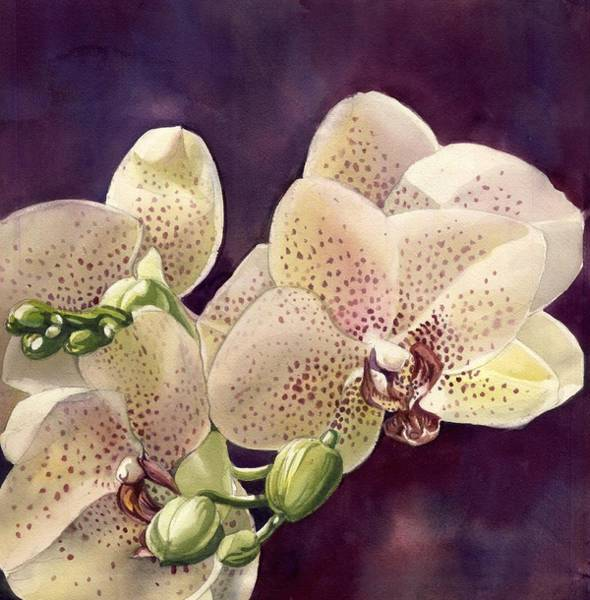 Painting - Pink Orchid by Alfred Ng