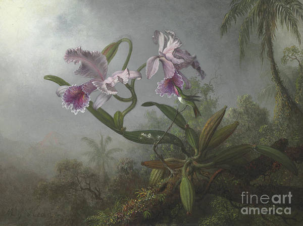 Wall Art - Painting - Pink Orchids And Hummingbird On A Twig, 1875 by Martin Johnson Heade