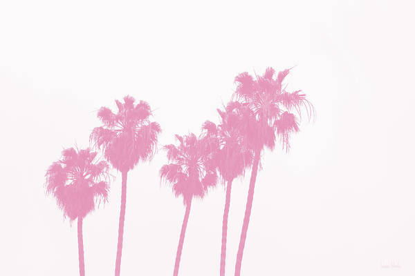 Tropical Photograph - Pink Palm Trees- Art By Linda Woods by Linda Woods
