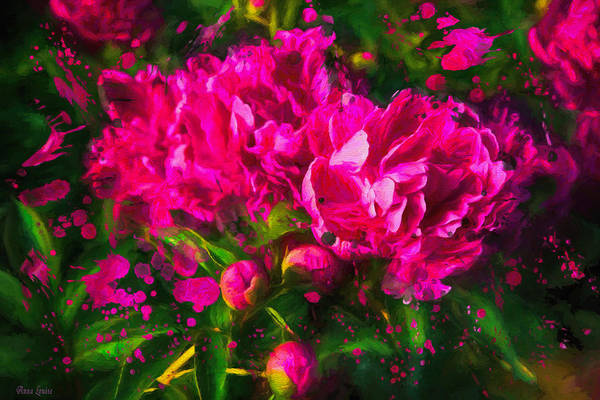 Photograph - Pink Peonies Splatter by Anna Louise