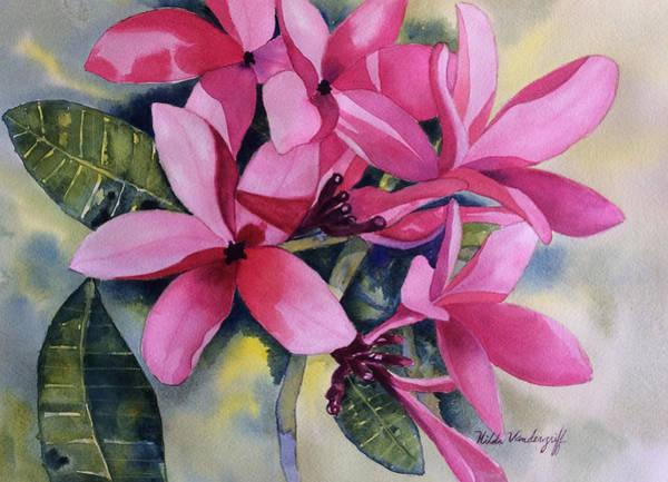 Pink Plumeria Flowers Art Print