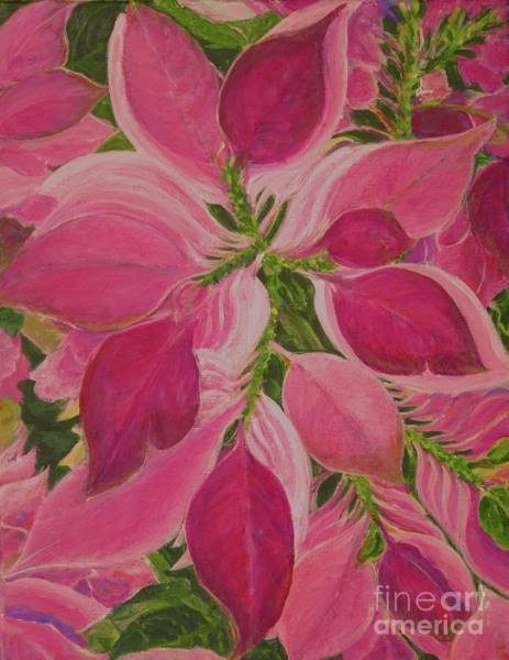 Painting - Pink Poinsettia by Gail Kent