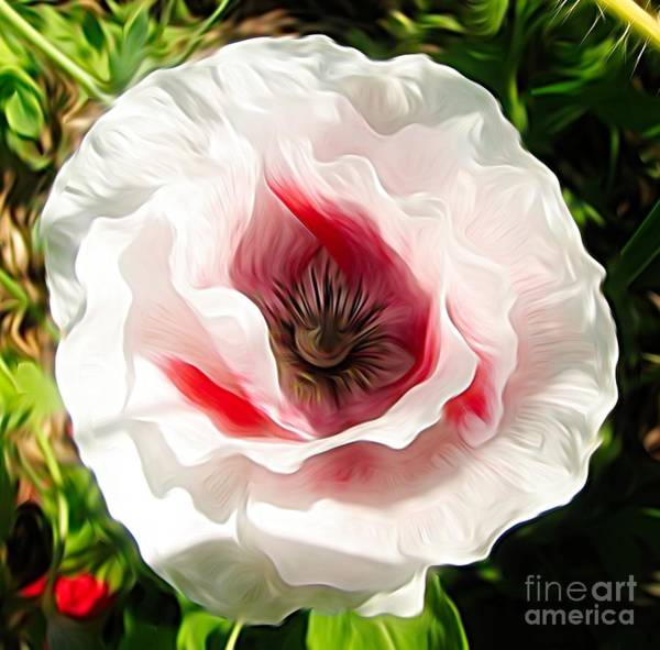 Photograph - Pink Poppy Flower Abstract by Rose Santuci-Sofranko
