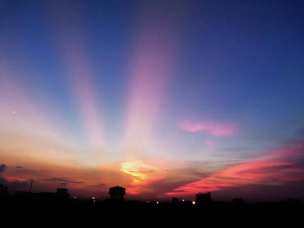 Photograph - Pink Rays by Atullya N Srivastava