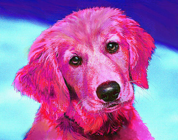 Golden Retriever Digital Art - Pink Retriever by Jane Schnetlage