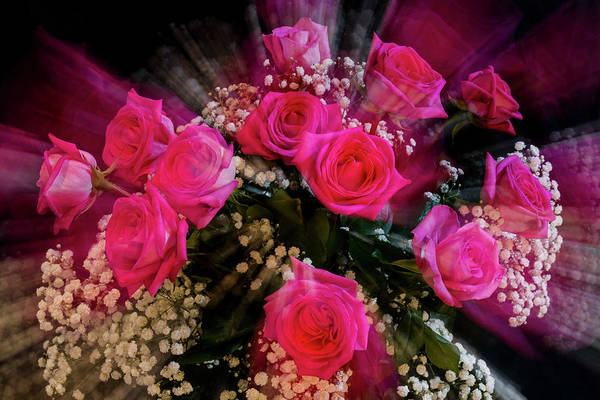 Photograph - Pink Roses Bouquet Explosion by James BO Insogna