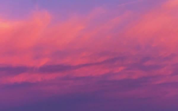 Photograph - Pink Sky by Douglas Killourie