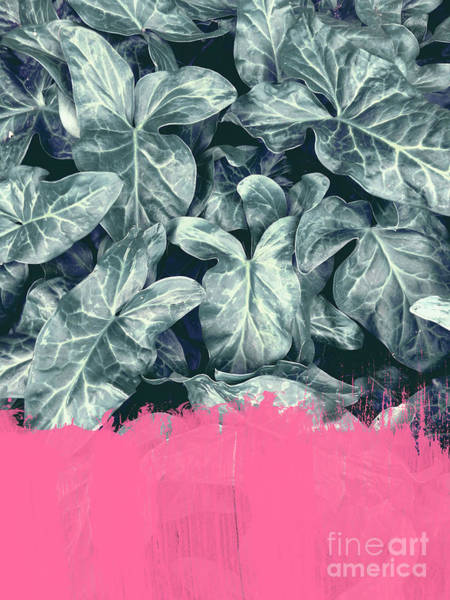 Mixed Media - Pink Sorbet On Jungle by Emanuela Carratoni