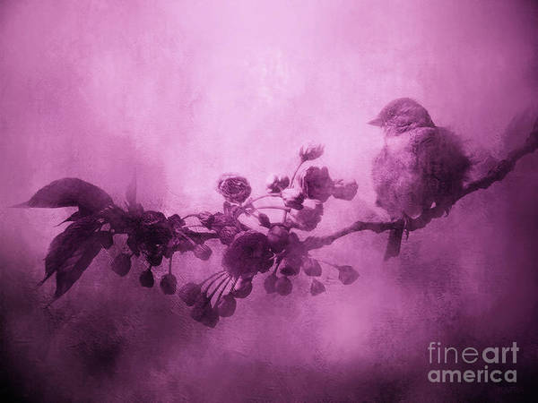 Blooming Tree Mixed Media - Pink Sparrow by KaFra Art