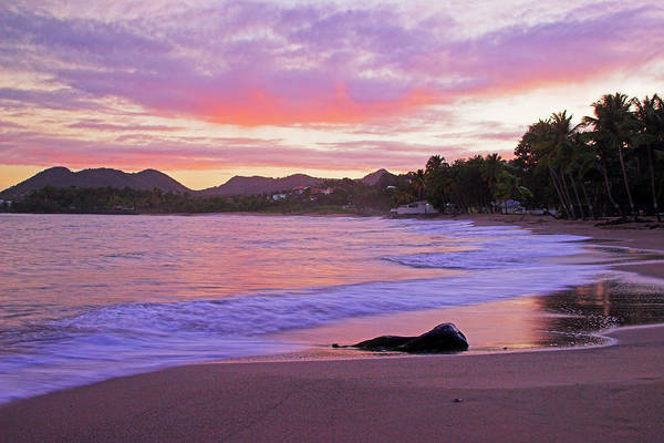 Wall Art - Photograph - Pink Sunrise- St Lucia by Chester Williams
