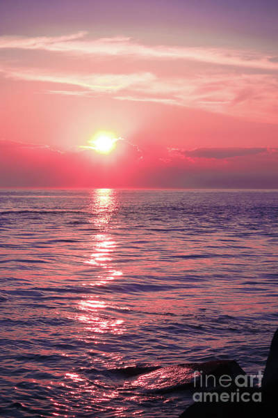 Wall Art - Photograph - Pink Sunset by Colleen Kammerer
