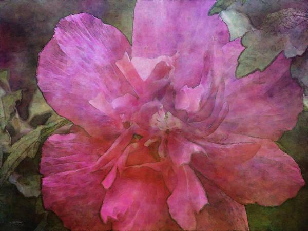 Photograph - Pink Swirl 4933 Idp_2 by Steven Ward