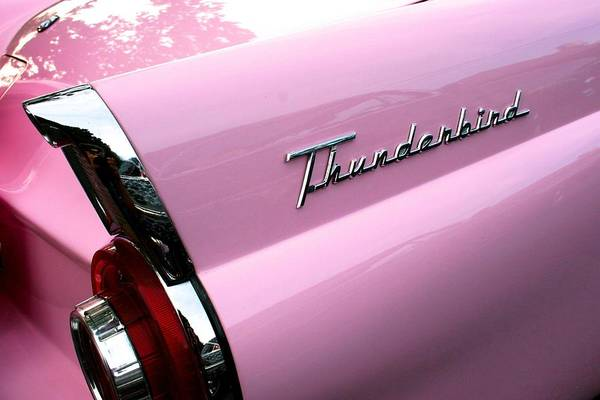 Photograph - Pink Thunderbird by Polly Castor