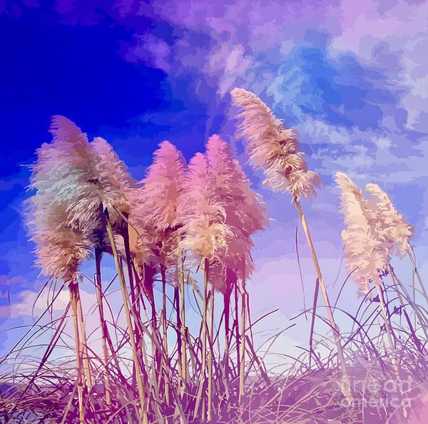 Pink Toi Toi Grasses Art Print