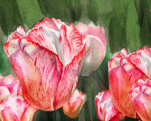Tulip Bloom Painting - Pink Tulips By Irina Sztukowski by Irina Sztukowski