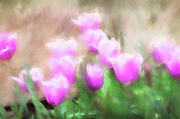 Photograph - Pink Tulips Paint 071417 by Rospotte Photography