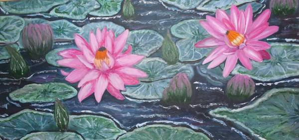 Don Williams Painting - Pink Water Lotus-lily by Don Williams