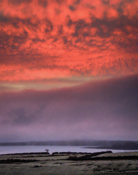 Photograph - Pink Winter Sunrise by James Truett