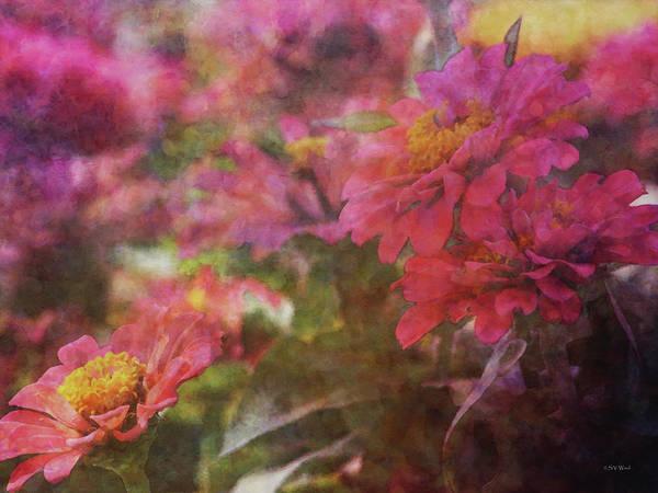 Photograph - Pink Zinnias 3840 Idp_2 by Steven Ward