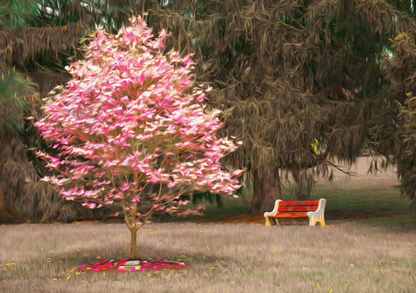 Photograph - Pinky And The Bench - Impressionism by Jason Fink