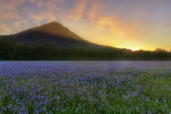 Photograph - Pinnacle Mountain Sunrise - Arkansas - State Park by Jason Politte