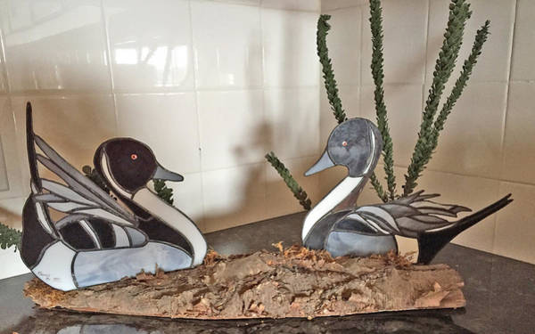 Glass Art - Pintail Ducks by Donald Paczynski