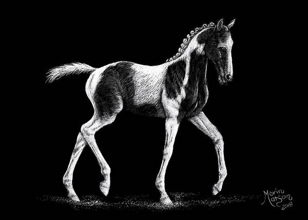 Drawing - Pinto Foal by Monique Morin Matson