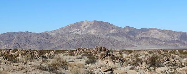 Photograph - Pinto Mountains  by Christy Pooschke