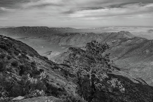 Photograph - Pinyon Point, May 2017, Black And White by TM Schultze