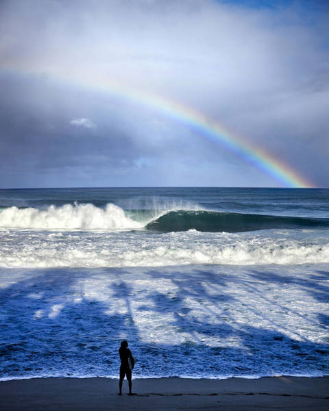 Wall Art - Photograph - Pipe Rainbow Palms by Sean Davey