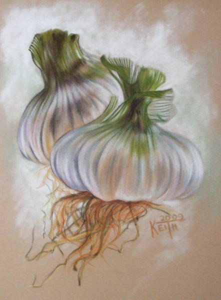 Pastel - Piquant by Barbara Keith