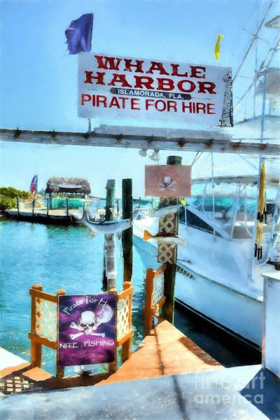 Photograph - Pirate For Hire by Mel Steinhauer