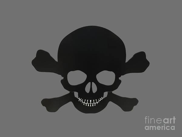 Photograph - Pirate Skull And Crossbones by Dale Powell