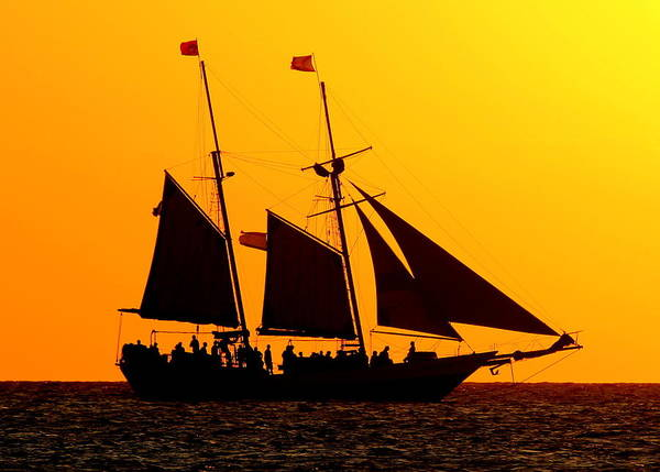 Photograph - Pirates In The Sun by Sean Allen