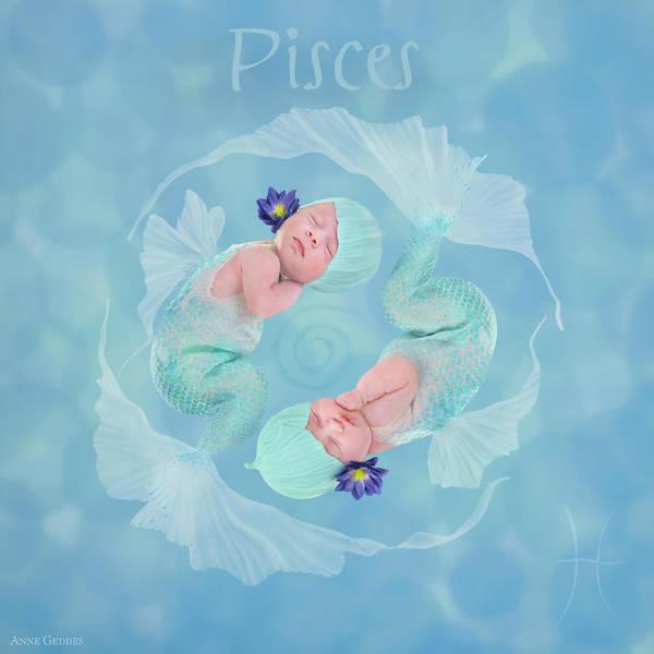 Zodiac Wall Art - Photograph - Pisces by Anne Geddes
