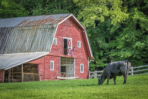 Photograph - Pisgah Forest Barn  by Donnie Whitaker